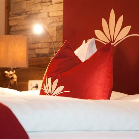 Red cushion on a double bed
